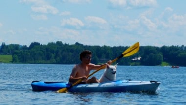 Happiness Is Dogs in Kayaks