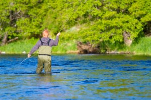 Fly Fisherman wearing Waders