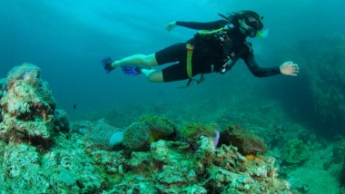 What is Scuba Diving & Do I Need to Be Certified to Try It?