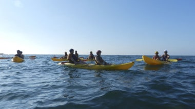 Be the Coxswain: Paddling in Tandem